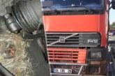 Тираджия чака 45 дни да се излюпят пиленца в двигателя на камиона му