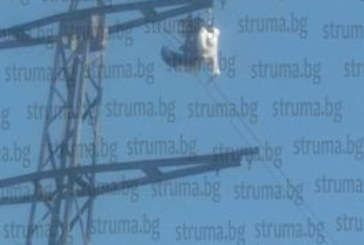 20000-волтова дъга уби щъркел в Дупнишко