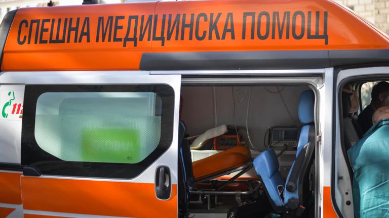 Такси помете млад мъж, хвърлил се на пътя да спасява домашния си любимец