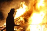 Голям пожар пламна на  хърватски остров