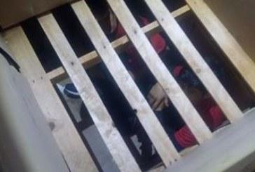 Нелегални мигранти заловени в тир с дини на Кулата /СНИМКИ/