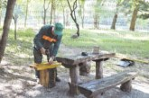 Нови пейки в зоната за барбекю на парк Бачиново