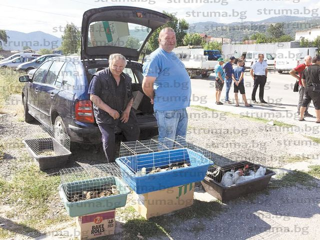 Стопани на животинския пазар в Благоевград: Всички истории с болестите по животните са политика да се затрие животновъдството в България, сега са прасетата, лани бяха овцете, наесен ще обявят, че има птичи грип...