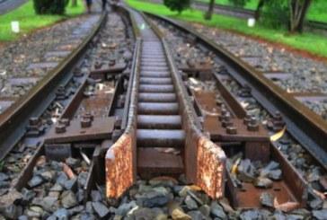 Влакът Кулата – София уби жена