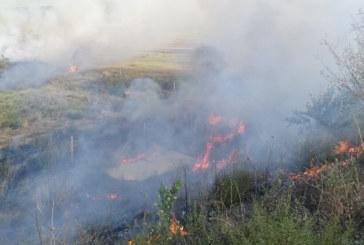 """Пожар край Благоевград предизвика задимяване на АМ """"Струма"""""""