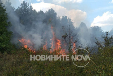 Голям пожар бушува в софийско