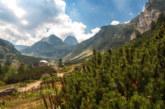 Издирват пострадал турист в района на Мальовица