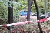 Отсечено дърво уби 49-г. мъж
