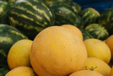 Двата плода, които през лятото се превръщат в истинско лекарство