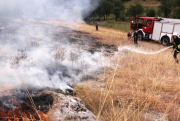 ОГНЕН УЖАС! Пожар бушува на изхода на Дупница