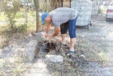 Въоръжен с водопроводен ключ, кметът на Големо село В. Васев отстранява авариите, оставили три дни без вода съселяните му, преди това закла 6 прасета на съседи като мярка срещу африканската чума