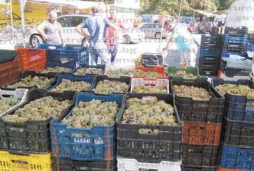 Търговци изкараха на пазара в Благоевград грозде за бяло вино от лозята на банкерката Цветелина Бориславова