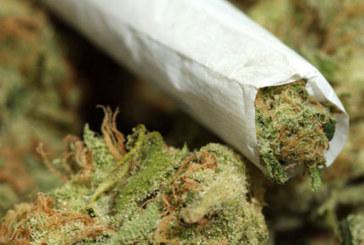Мъж, държал дрога в жилище в Благоевград, се призна за виновен