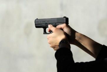"""Отказаха на дупничанин разрешително за пистолет """"Глок"""", за да пази стадото си от вълци"""