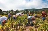 Разкриха мрежа за трудова експлоатация на българи във Франция
