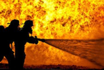 Голям пожар лумна в химически завод във Франция