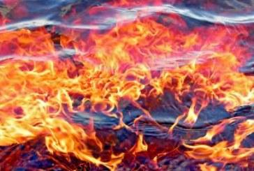 4 пожара гасиха в Кюстендилско