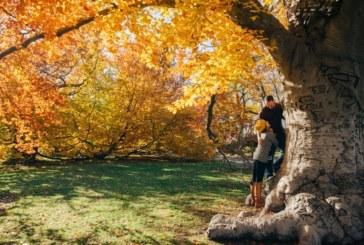 Защо есента е най-добрият сезон за любов