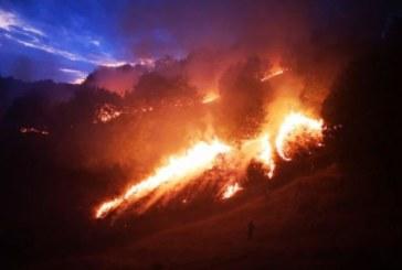 Нов огромен пожар в Огражден погълна над 1000 дка гори