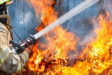 Огнен ужас! Пожар бушува между селата Брягово и Искра