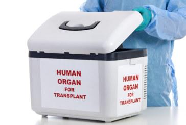 Разкриха канал за донорство на бъбреци у нас