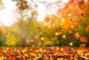 Циганско лято! Живакът скача до 30 градуса през октомври