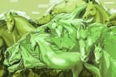 Колко коне виждате? Отговорът разкрива много за вас