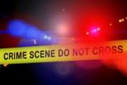 2-годишно момиченце уби майка си по нелеп начин