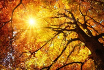 Есенно слънце ще ни грее в сряда