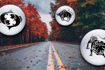 Как всяка зодия реагира на есента