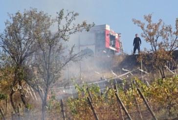 Пожар пламна над благоевградското село Рилци
