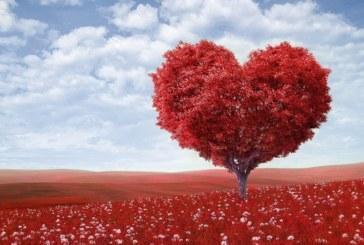 4 зодии, които ще имат късмет в любовта до края на есента