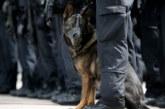 """Митническо куче надуши 940 кутии нелегални цигари на """"Дунав мост 2"""""""