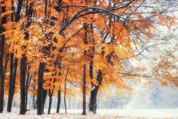 Вадете зимните дрехи, скоро ще вали сняг