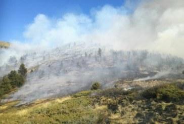 """Пожарът в Национален парк """"Рила"""" е локализиран"""