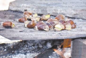 Кулинарки от Брежани изненадаха с апетитни ястия гостите на празника на кестена