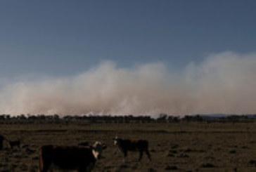 Огнен ад в Австралия! Армията на помощ в гасенето на пожарите