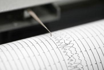 Мощно земетресение удари Мексико
