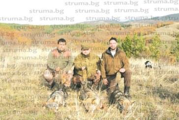 Авджии ликвидираха  глутницата вълци, тормозеща от месеци хората в Долно Осеново