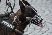 Полицейско куче откри 730 кг. хероин в Словения