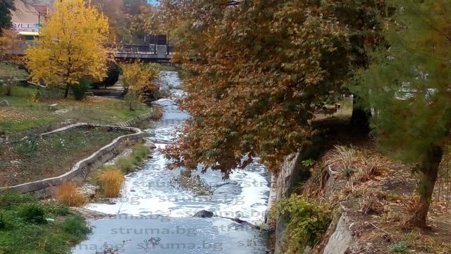 """Река Благоевградска Бистрица се разпени, спряха водата в езерото с лебеди на парк """"Бачиново"""""""