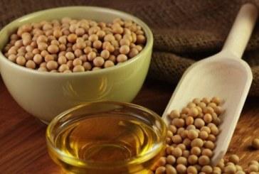Консумацията на соеви продукти може да е опасно