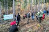 Нови доброволчески акции по залесяване на територията на ЮЗДП