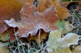 Мъглите се завръщат, остава сравнително меко за декември