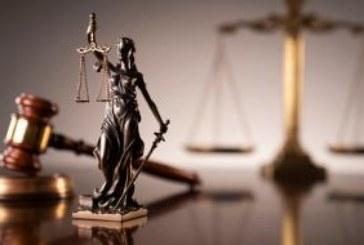 Петричанин осъден на пробация за кражба на дърва в Санданско