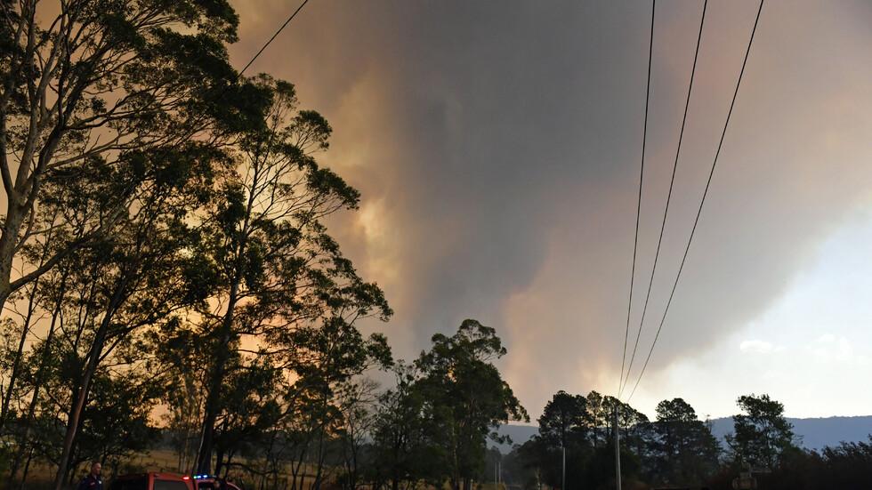 Знаменитости правят дарения за пострадалите от пожарите в Австралия