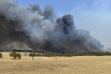Замърсяването от пожарите в Австралия се доближава до това в амазонската гора