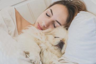 Прости стъпки за лесно заспиване