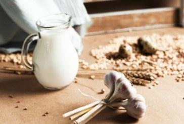 Вижте ползите за здравето от чудодейното чесново мляко
