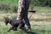 По-ниски такси за ловците пенсионери в Кюстендилско
